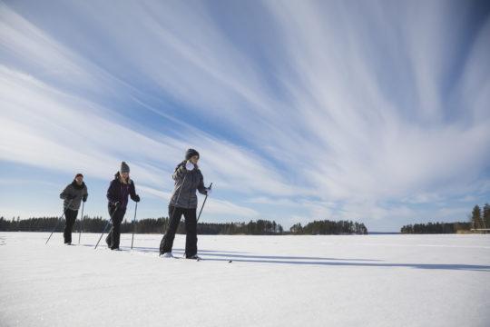 Hiihtäjät järven jäällä