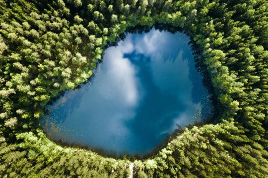 Kelvenneenlampi Päijänteen kansallispuisto
