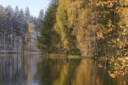 Vierumäki Ahvenlampi Lemmenharjun luontopolku syksy järvimaisema nature trail