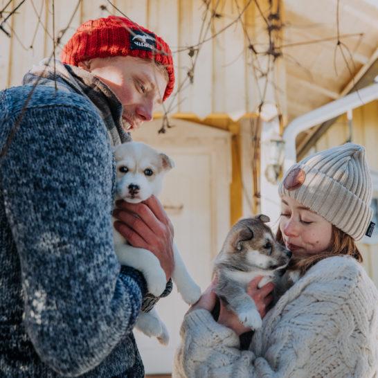KoiraKikka Husky Farm Heinola