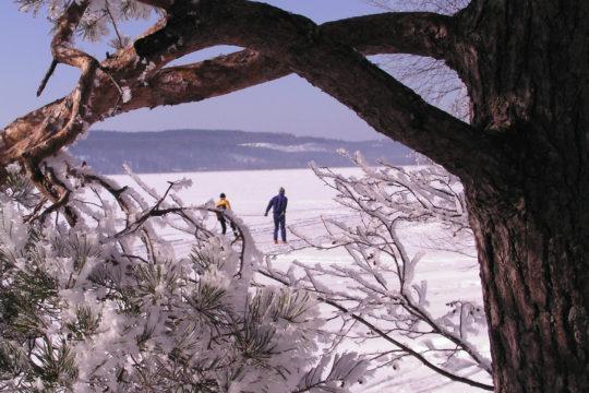 Hiihtoa Vesijärven jäälle skiing