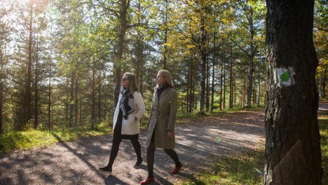 Lehmusreitti Radiomäki kaupunkiluontopolku city nature trail