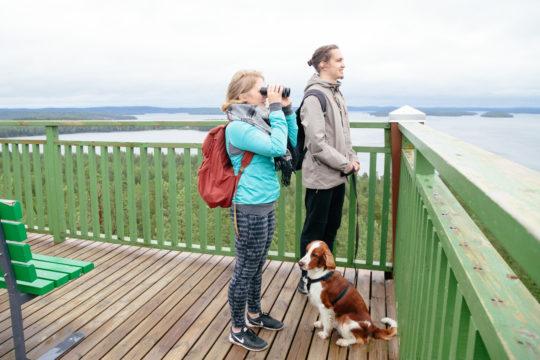 Kullasvuoren maisematorni Padasjoki