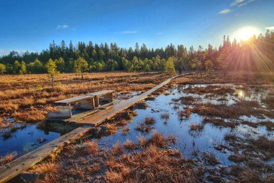 Soisalmen suo Hollola swamp scenery