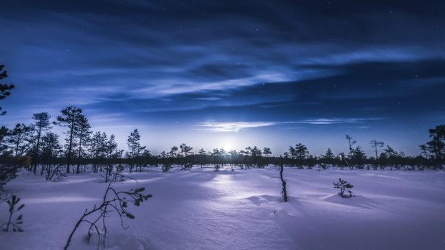 Linnaistensuo swamp talvi winter Lahti