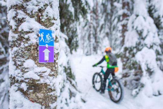 Salpausselkä Trails