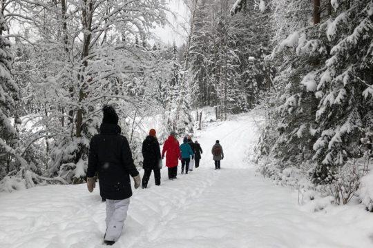 Best Lake Nature Adventures talvi Metsämieli-kävely