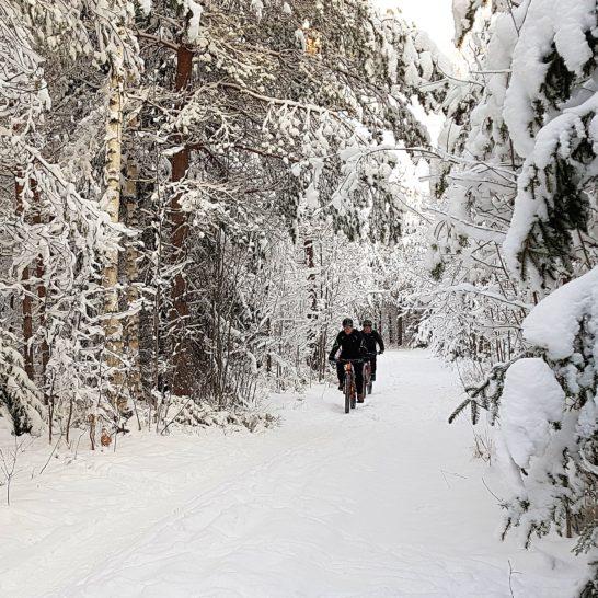 Talvipyöräily maastopyöräily