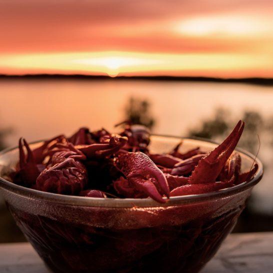 Rapuja Crayfish