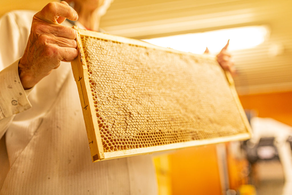 Valosen hunajatila